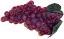 Fake small grapes Burgundy