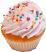 Fake Vanilla Cupcake Sprinkle