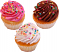 Fake Cupcakes 3 Pack Sprinkle
