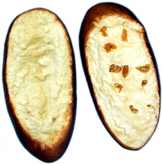 Garlic Bread Slice 2 pack FAKE BREAD