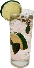 Mojito Glass fake drink USA