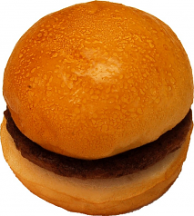Hamburger Plain fake food USA