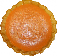 Pumpkin Pie Plain Artificial Pie USA