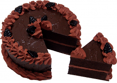Chocolate Fake Cake With Slice 9 inch USA