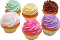 Fake Cupcakes 6 Pack PLAIN Assortment USA