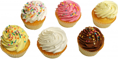 Fake Cupcakes 6 Pack Assortment USA