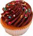 Chocolate Fake Cupcake USA