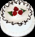 "Vanilla Raspberry 6"" Drizzle Fake Cake USA"