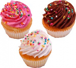 Fake Cupcakes 3 Pack Sprinkle Cupcake USA