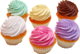 Fake Cupcakes 6 Pack PLAIN Assortment USA