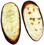 Garlic Bread Slice 2 pack FAKE BREAD