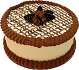 Chocolate Drizzle fake cake 9 inch USA